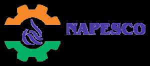 NAPESCO INDIA